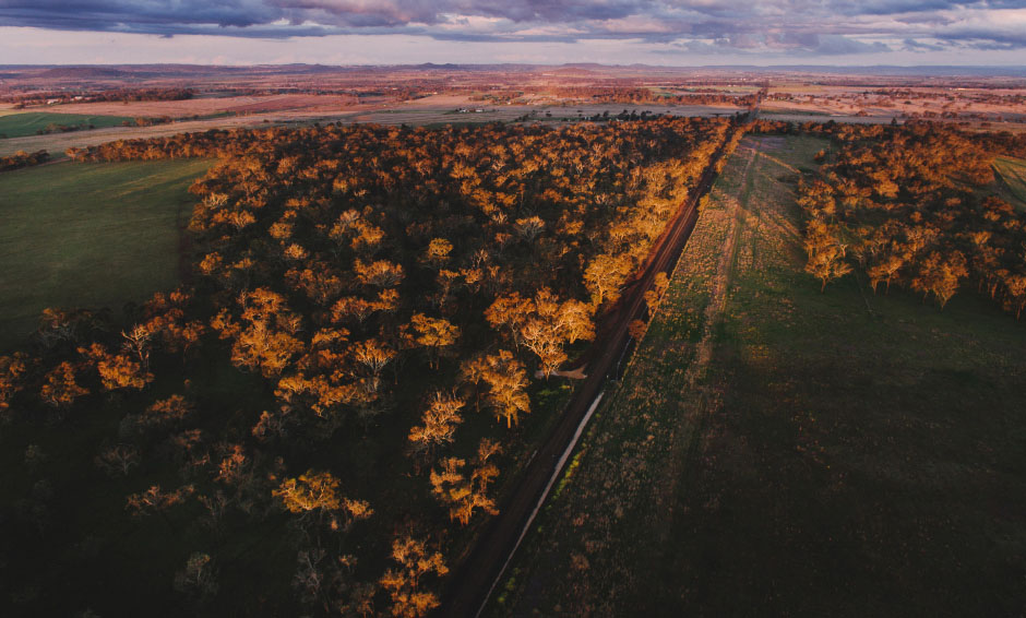59-darling-downs-photographer